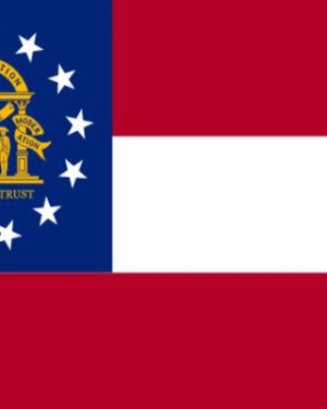USA State Georgia Business Email List, Sales Leads Database 1