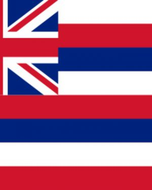 USA State Hawaii Business Email List, Sales Leads Database 1