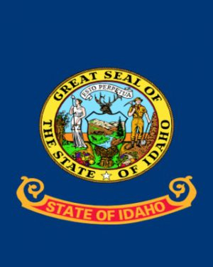 USA State Indiana Business Email List, Sales Leads Database