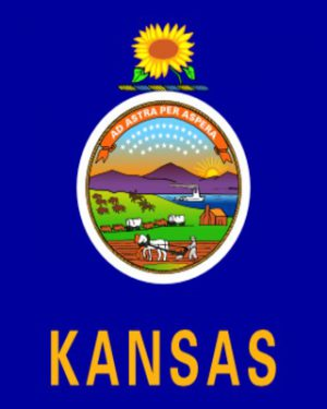 USA State Kansas Business Email List, Sales Leads Database 1