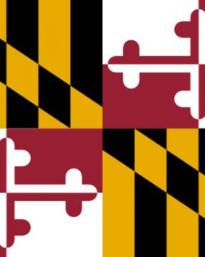 USA State Maryland Business Email List, Sales Leads Database 1