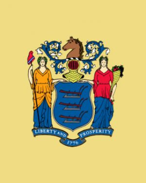 USA State New Jersey Business Email List, Sales Leads Database 1