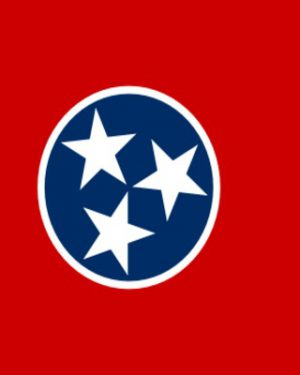 USA State Tennessee Business Email List, Sales Leads Database 1